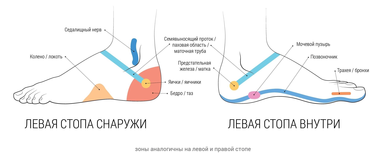 Как правильно сделать ноги